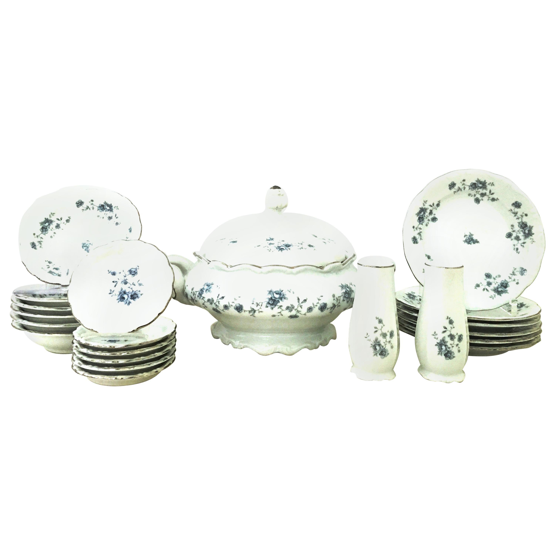 20th Century German Porcelain & Platinum Dinnerware Set of 21 by Johann Haviland
