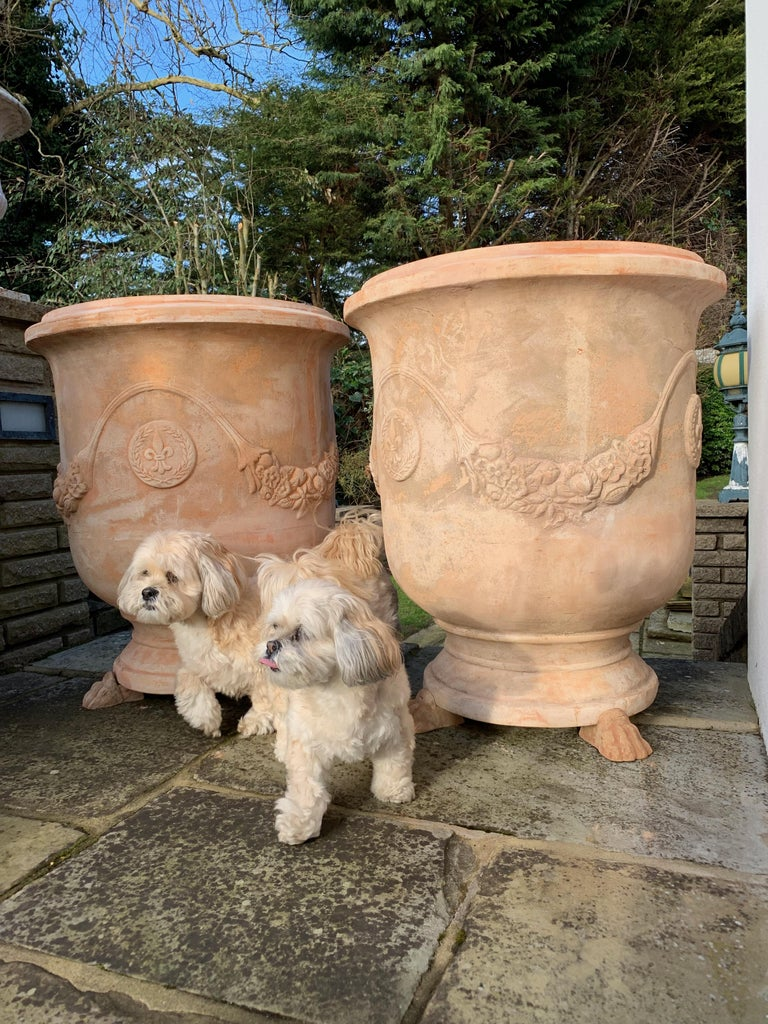 Italian 20th Century Large Handmade Terracotta Pots from Tuscany For Sale