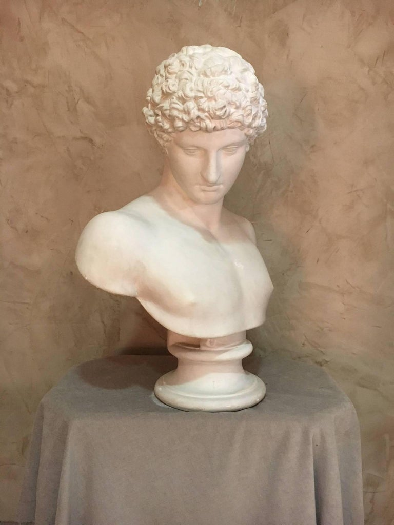 Nice Apollo men plaster bust from the 1940s.  Good condition.