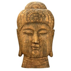20th Century over Sized Buddha Head in Wood with Golden Patina