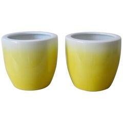 20th Century Pair of Ceramics Hibachi
