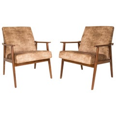 20th Century Pair of Lion Beige Dante Armchairs, 1960s