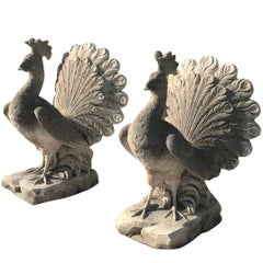 20th Century Pair of Peacocks in Limestone