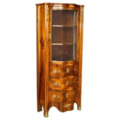 20th Century Palisander and Mahogany French Display Cabinet, 1920