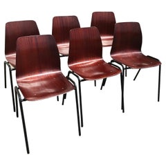 20th Century Set of Six German Pagholtz Pagwood Stackable Chairs, 1960s