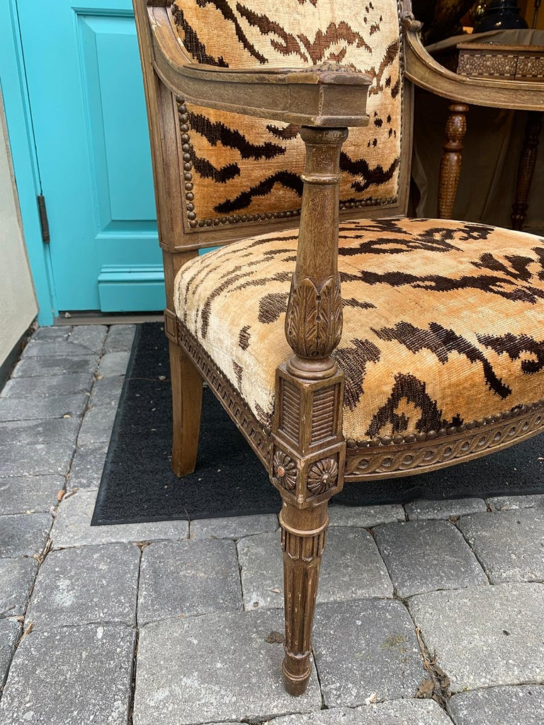 20th Century Yale Burge Directoire Style Carved Armchair with Tiger Upholstery 13
