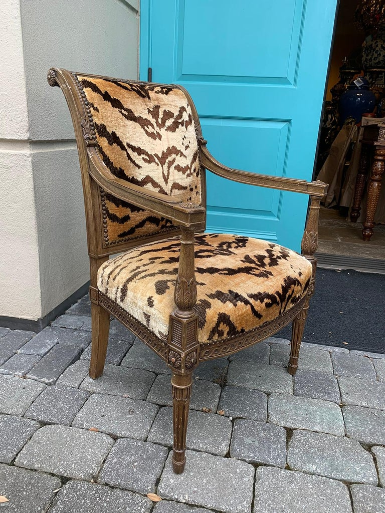 20th century Yale Burge Directoire style carved armchair with velvet tiger upholstery Measures: 23