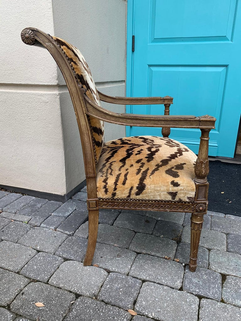 20th Century Yale Burge Directoire Style Carved Armchair with Tiger Upholstery 1