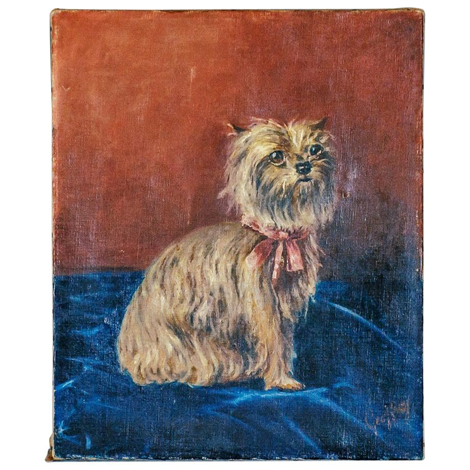 20th Century Yorkshire Terrier Portrait Oil Painting on Canvas