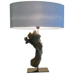 21st Century, Modern, Design, Designer Lamp, Organic Lamp, Driftwood, Table Lamp