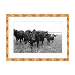 21st Century Oklahoma Ranch Framed Burl Wood Print with White Matte