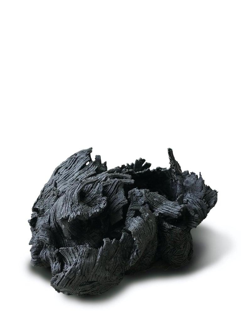 Organic Modern 21st Century Organic Sculpture