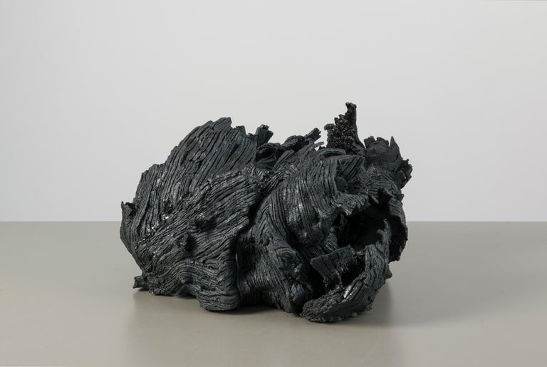 21st Century Organic Sculpture