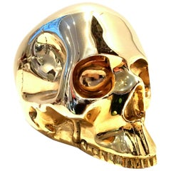 21st Century Solid Brass Skull Head Sculpture by, D.L. & Co.
