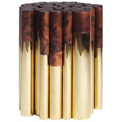 21st Century Wanderlust Side Table Polished Brass Walnut Root Pipes