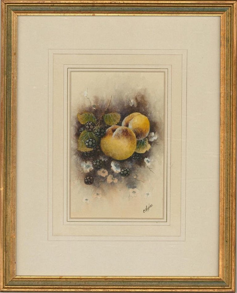 Christopher Hughes - 20th Century Watercolour, Peaches and Blackberries - Art by Christopher Hughes