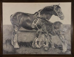 J.P. - 20th Century Graphite Drawing, Shire Horse and Foal
