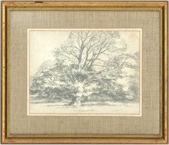 Glyn Morgan (1926-2015) - Signed 1974 Graphite Drawing, Tree Study in Devon