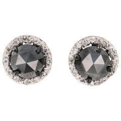 2.40 Carat Black Diamond 14 Karat White Gold Stud Earrings