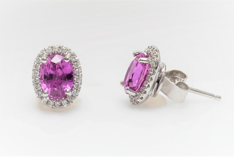 2.44 Carat Total Oval Natural Pink Sapphire Stud Earrings with Diamond Halos In New Condition For Sale In Houston, TX