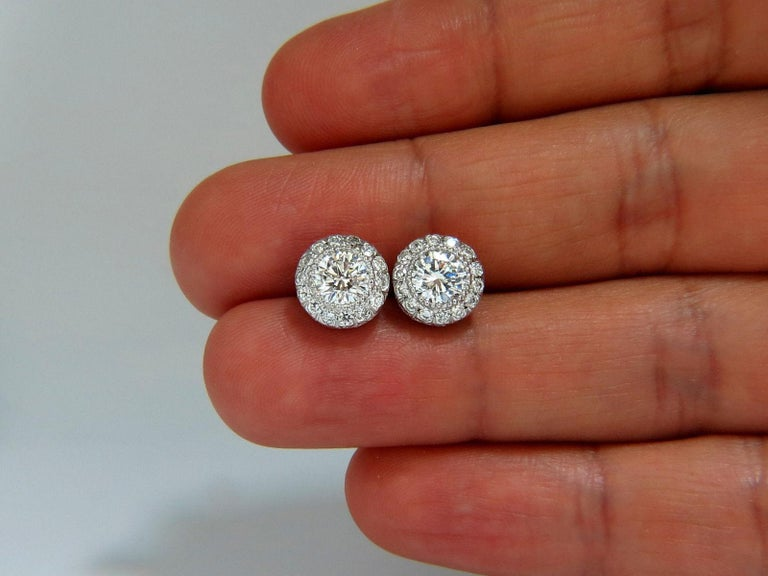 Round Cut 2.50 Carat Natural Diamonds Halo Stud Earrings and Profile Encrusted 14 Karat For Sale