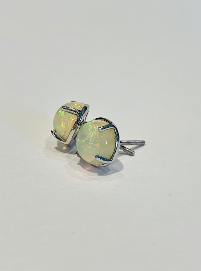 2.50 Carat AAAA Round Welo Opal Stud Earrings Set in Platinum In New Condition For Sale In Chislehurst, Kent