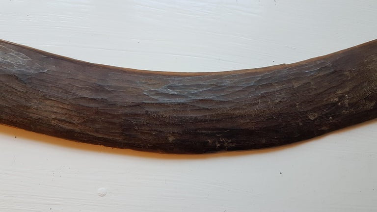 3 19th Century West Australian Boomerangs For Sale 7