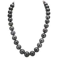 33 Tahitian Pearl Strand with 14 Karat White Gold Clasp