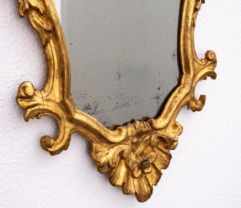 19th Century 4 Tuscan Giltwood Mirrors For Sale