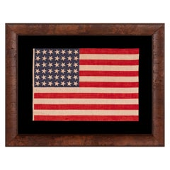 42 Stars, an Unofficial Star Count on an Antique American Flag, Scattered Stars