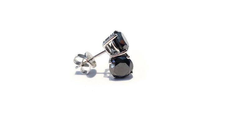 4.57 Carat Black Diamond 18 KT White Gold Solitaire Tresor Paris Stud Earrings  For Sale 1