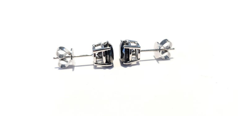 4.57 Carat Black Diamond 18 KT White Gold Solitaire Tresor Paris Stud Earrings  For Sale 3