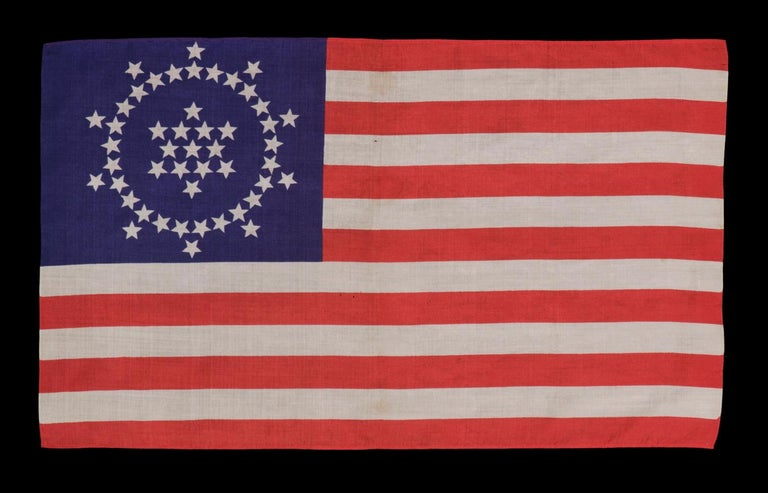 Early 20th Century 48 Stars on an Antique American Flag Designed and Commissioned by Wayne Whipple For Sale