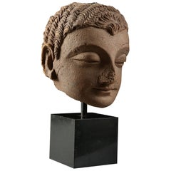 4th-5th Century Indian Gandhara Stucco Head on Black Metal Plinth