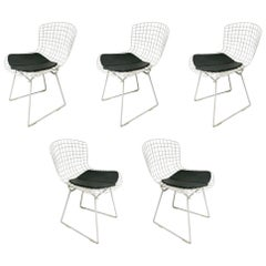 5 Chairs by Harry Bertoia for Knoll, circa 1975