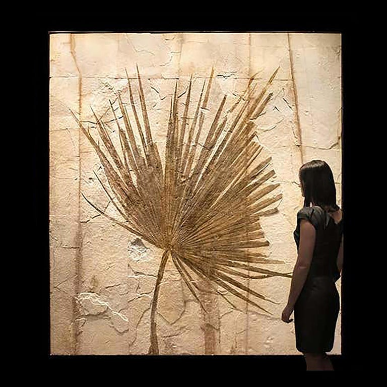American 50 Million Year Old Eocene Era Fossil Palm Frond Mural in Stone, from Wyoming For Sale