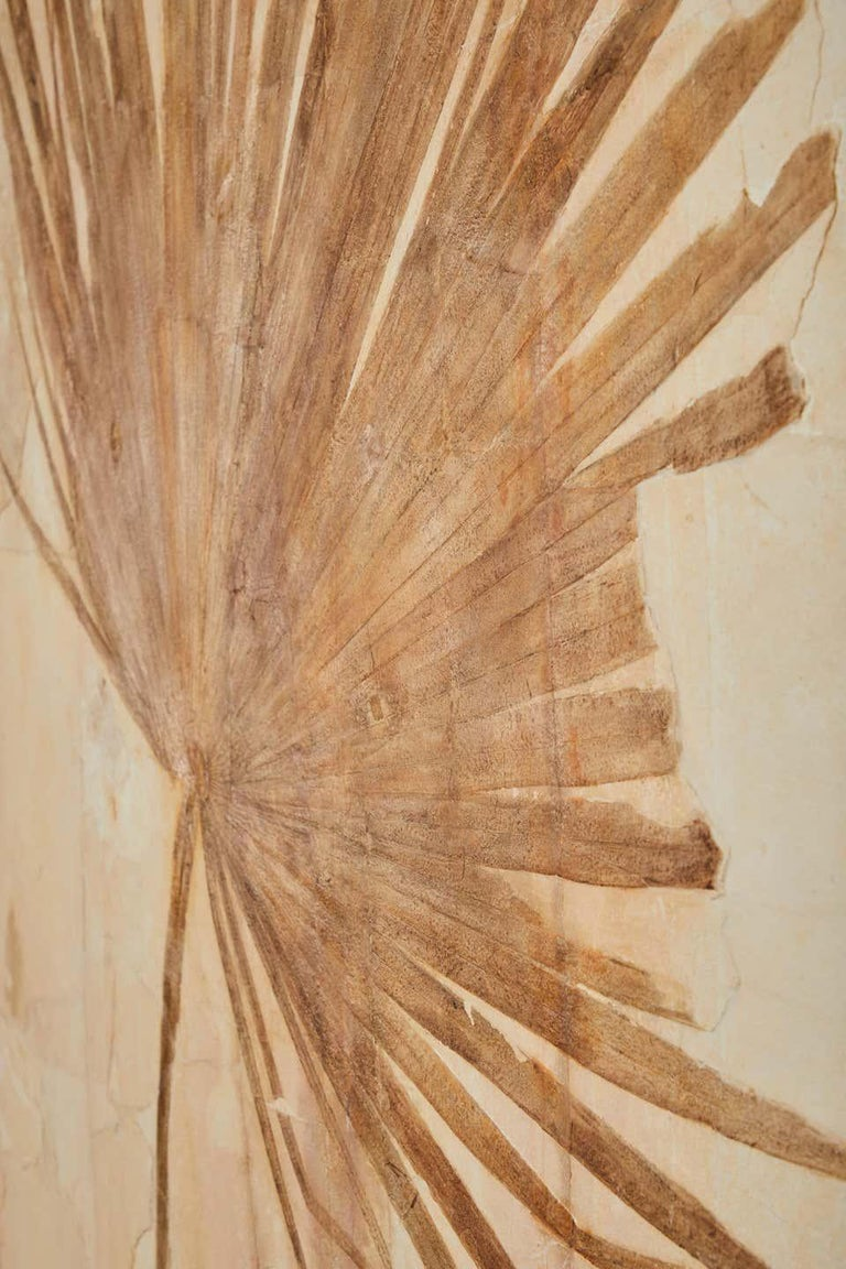 50 Million Year Old Eocene Era Fossil Palm Frond Mural in Stone, from Wyoming In New Condition For Sale In Logan, UT