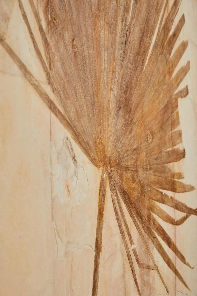 Organic Material 50 Million Year Old Eocene Era Fossil Palm Frond Mural in Stone, from Wyoming For Sale