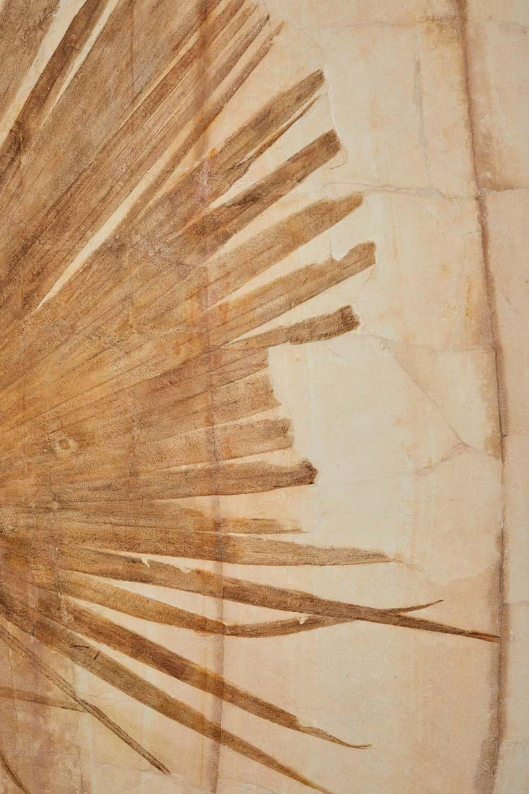 50 Million Year Old Eocene Era Fossil Palm Frond Mural in Stone, from Wyoming For Sale 1