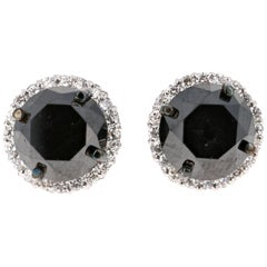 5.57 Carat Black Diamond Earring Studs 14 Karat White Gold