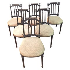 6 Chairs in Louis Seize Stil Black Ebonized