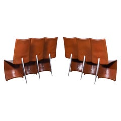 6 Cognac Leather Ed Archer Chairs by Philippe Starck for Driade / Aleph