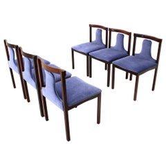 6 Dining Chairs by Claudio Salocchi for Sormani, 1960s