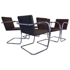 6 Dining Chairs - Mies Van Der Rohe Brno Knoll Studio chrome & Suede Chairs