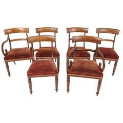 6 Early Victorian Mahogany Dining Chairs '4+2', Scotland 1840, B2374