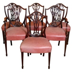 6 English Dining Chairs Hepplewhite Mahogany Leather, 19th Century