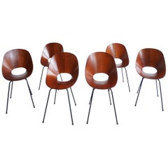 6 Extraordinary Firsth Edition Medea Chairs by Vittorio Nobili, 1954 Tagliabue