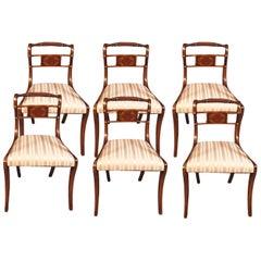 6 Mahogany Dining Chairs