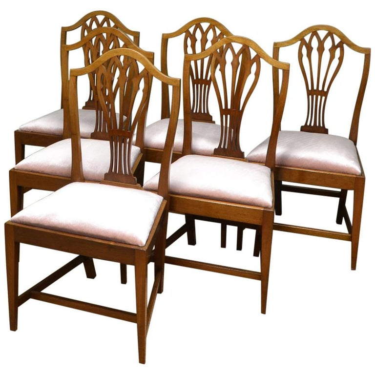 Fabulous 6 Mahogany Edwardian Hepplewhite Design Antique Dining Chairs Alphanode Cool Chair Designs And Ideas Alphanodeonline