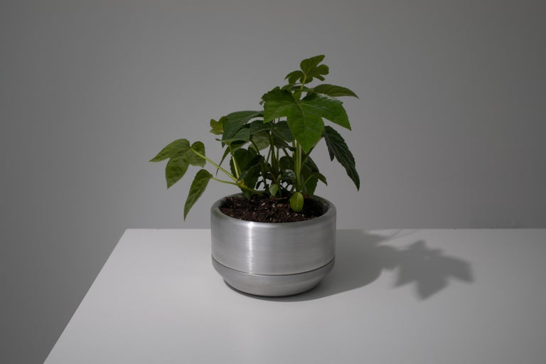 CNC milled and spun aluminum planter with clear anodized finish. The main body of the planter is set on a loose spun aluminum drainage base. Interior dimensions are 5.5 inches diameter, and 2.75